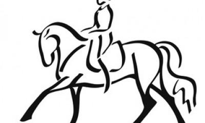 Noor koolisõidu hobune