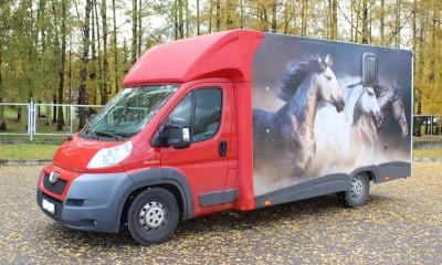 Peugeot Boxer 3 hobuseauto / 3 horsevan / 3 horsetruck