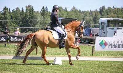 Dressage pony Aramis for sale